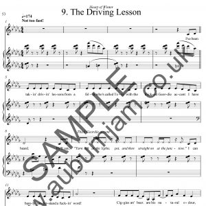 The Driving Lesson Sample